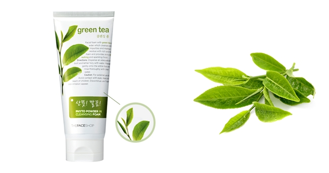 Phyto Powder in cleansing Foam Green Tea The Face Shop
